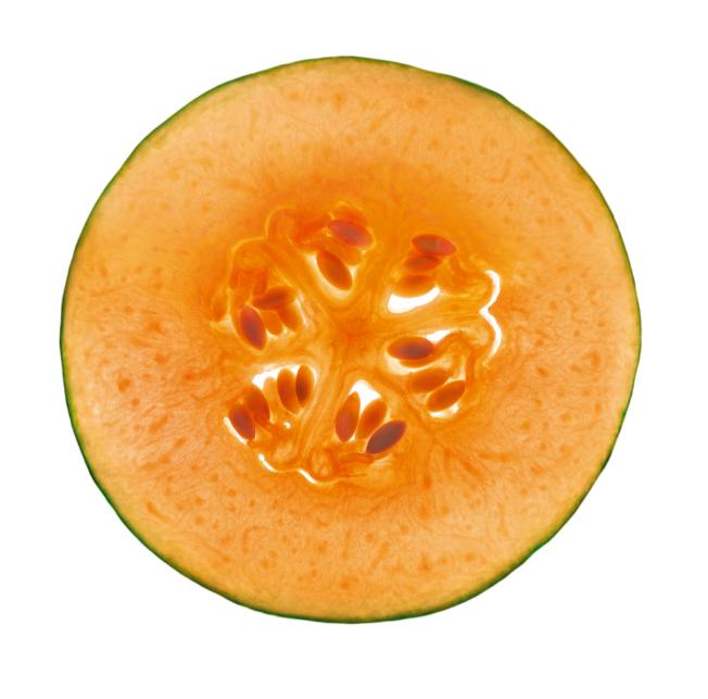 photographie de melon - extramel